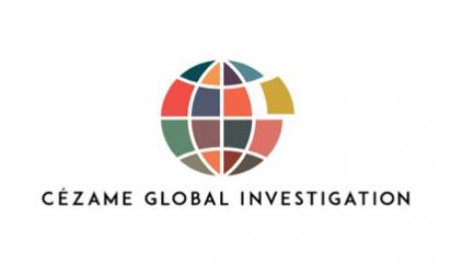 Global Investigation